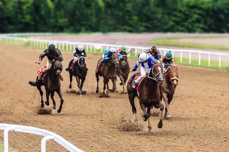 Horse race finish line