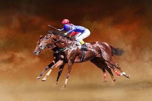 Racehorse blur