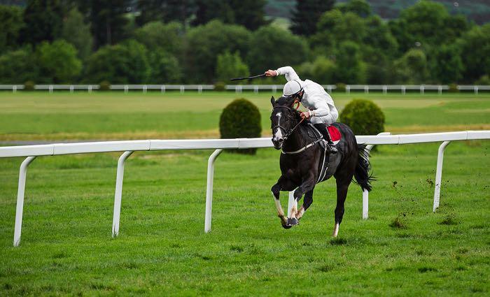 Jockey in race