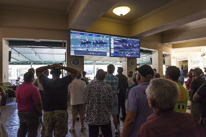 Punters watching horse race on screen