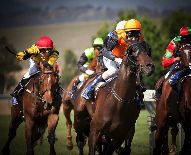 Horse racing group