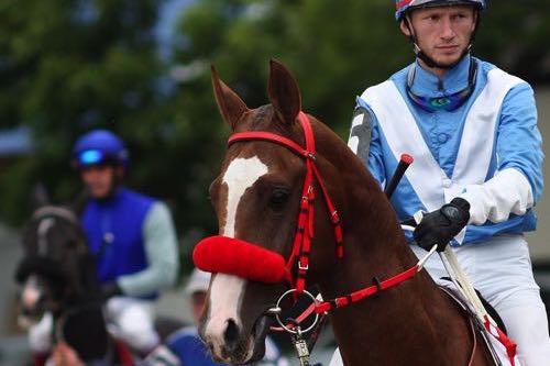 Jockey up close